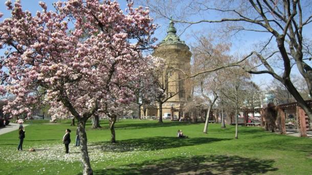Der Park um den Wasserturm Mannheim herum.